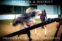 Prestwick & District Dog Training Club